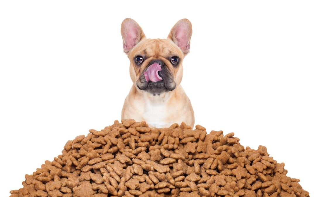 Major Food Trends Pet Food Brands are Following in 2017